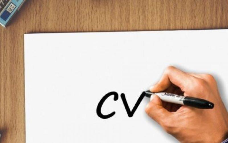 Balcão-de-Empregos-também-está-com-uma-parceria-com-o-programa-Bolsa-Estudantil-550×300