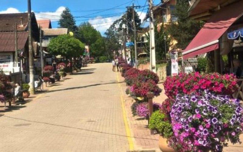 Avenida-Monte-Verde-Florida-850×635-550×300